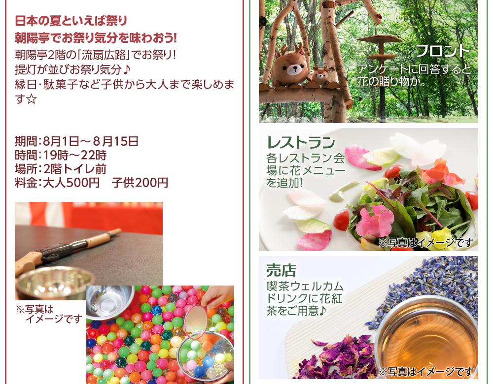 日本の夏祭り 提灯 縁日 駄菓子